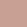 Nude Rose